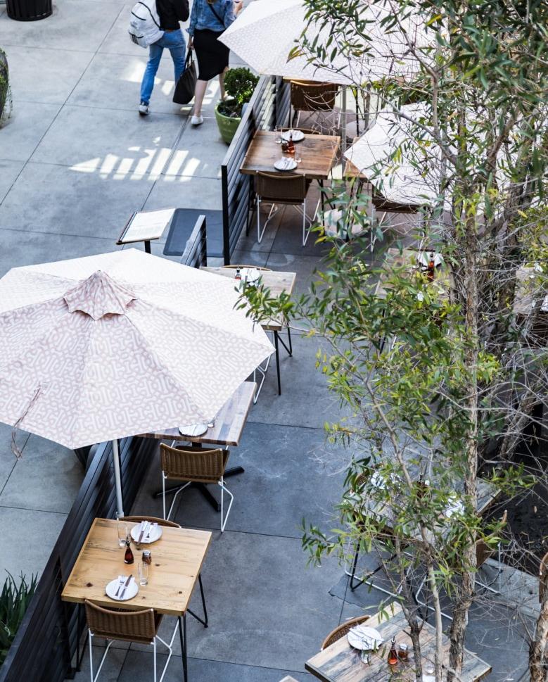 Alfresco terrace dining surrounds park.