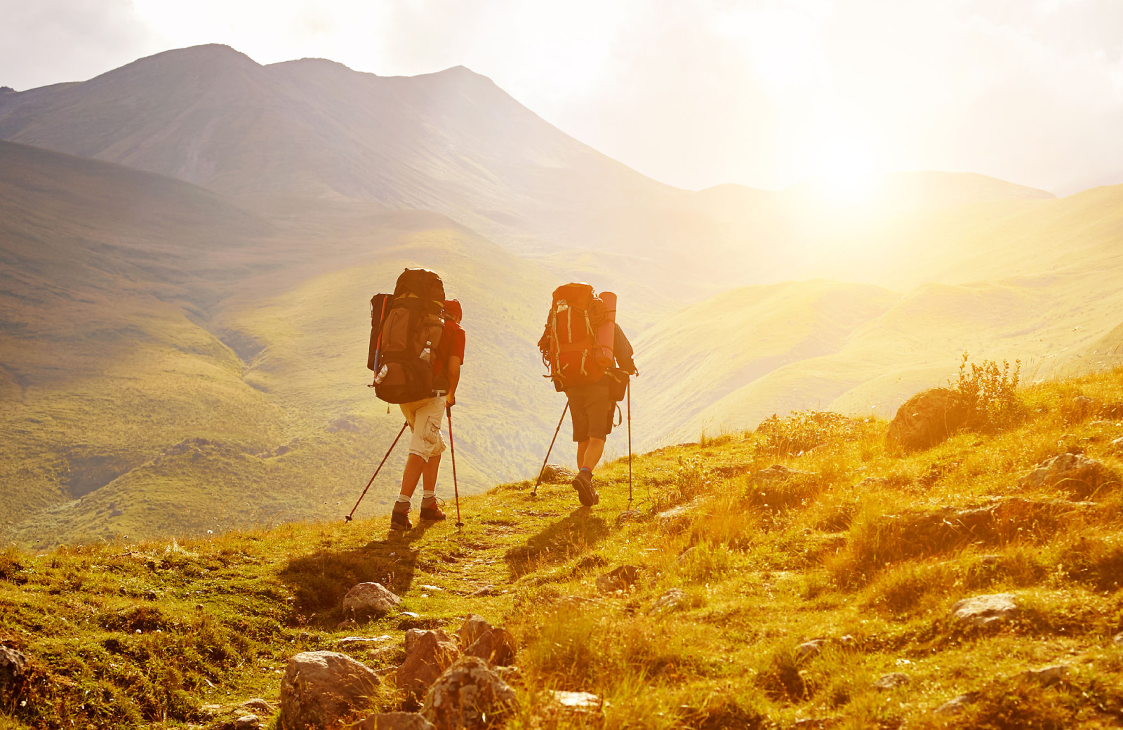 Glendale Hiking Trail - Altana Apts