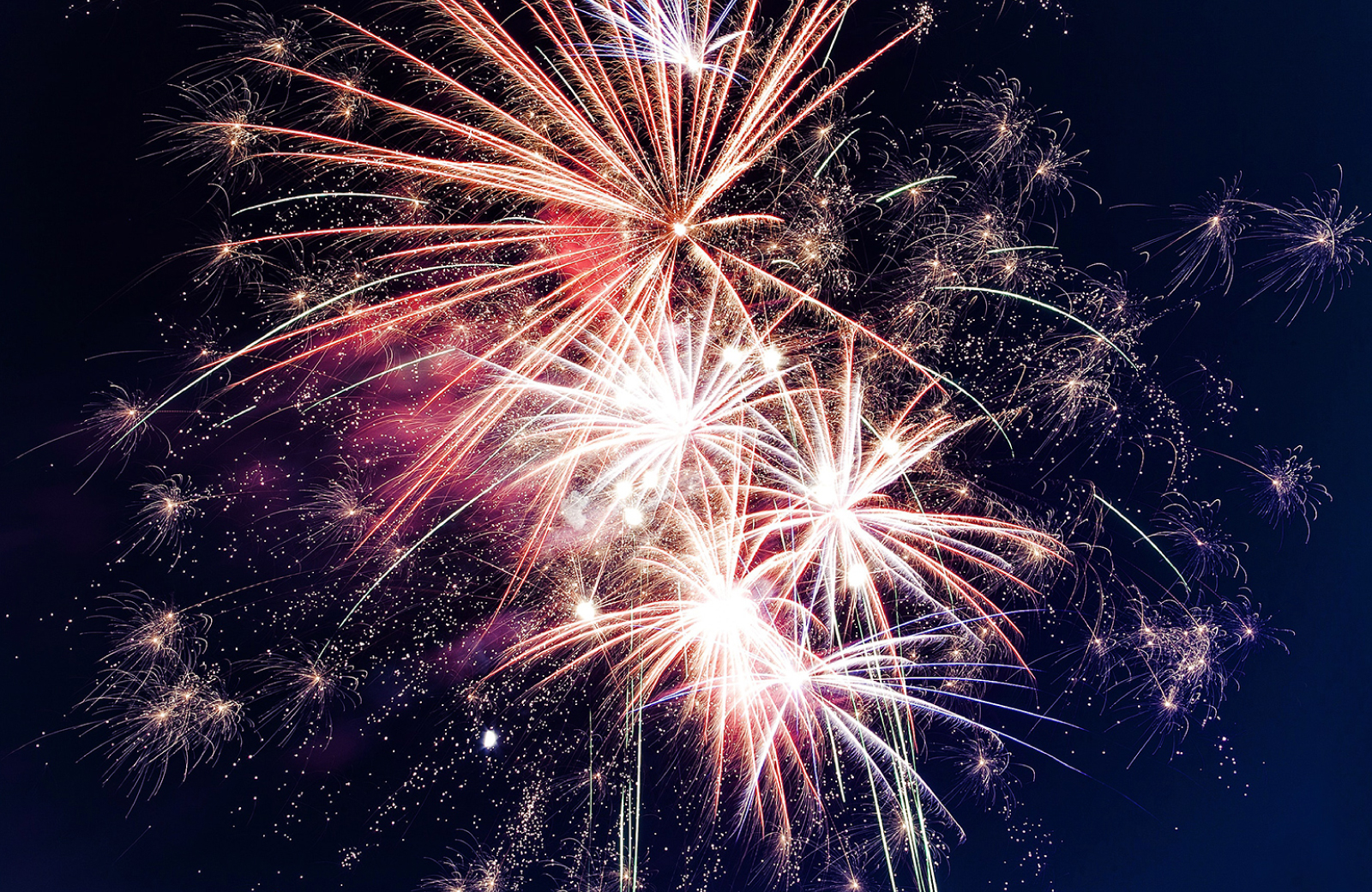 Huge pink and white fireworks exploding in the night sky - 4th of July NYC - The Cole