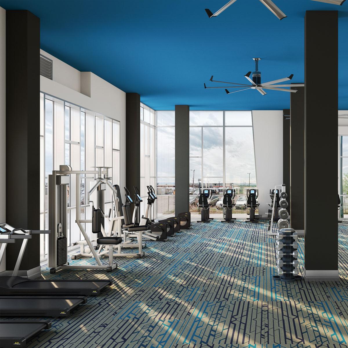 Movement Gym