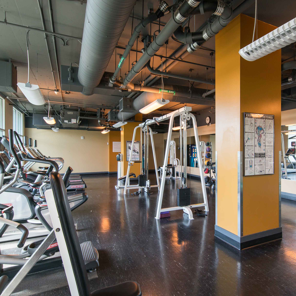 The Vue -  Fitness Center