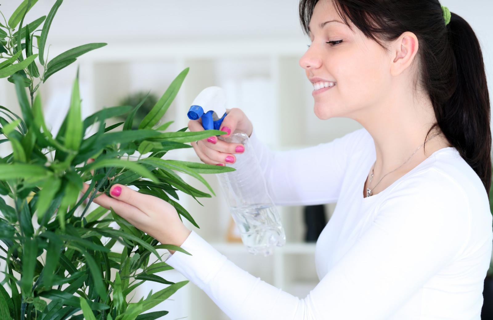 Indoor Garden - Alder Apartments Northridge