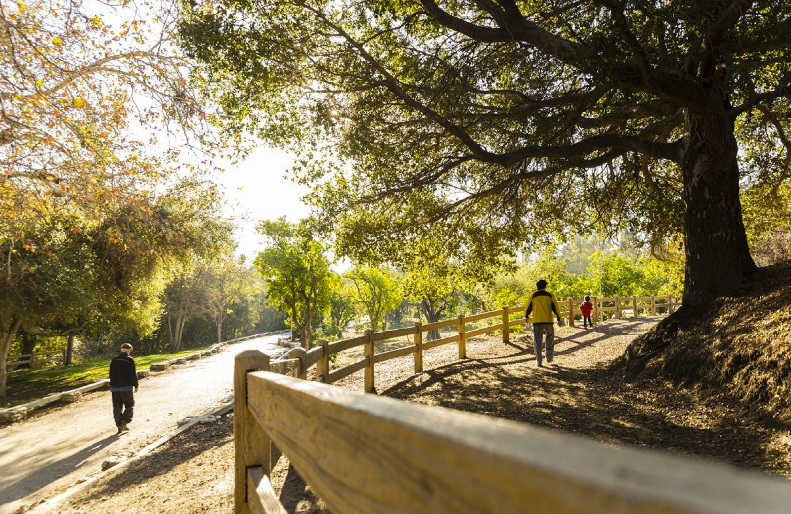San Fernando Valley - Alder Apartments Northridge