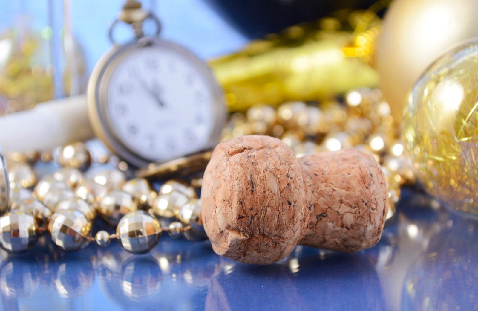 New Year Ceebration Northridge - Alder Apts