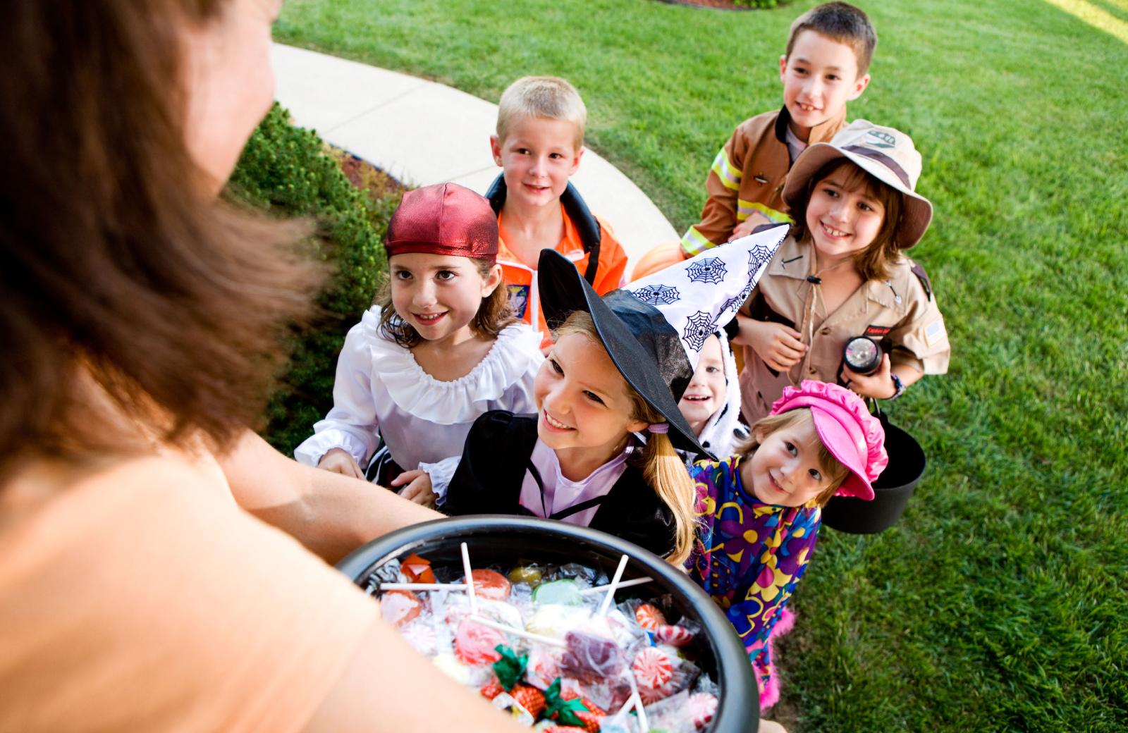 Palo Alto Fall Activities - The Village Residences Apts