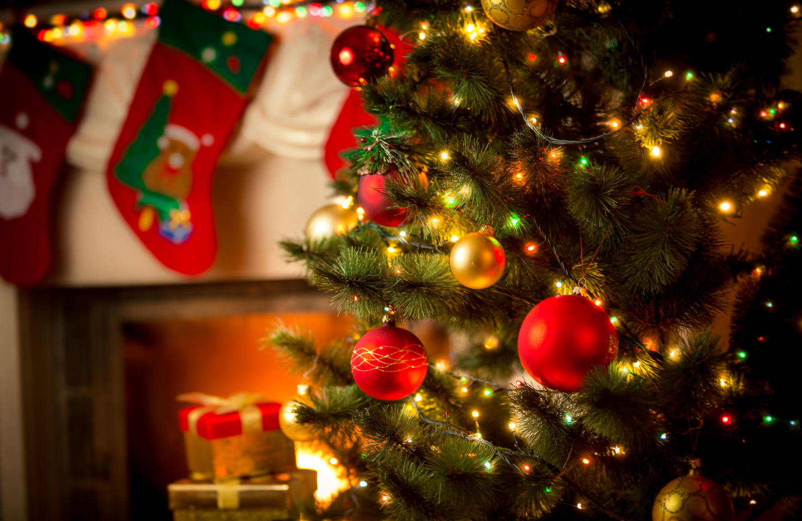 Holiday Cheer in Fairfield County - The Waypointe Apartments
