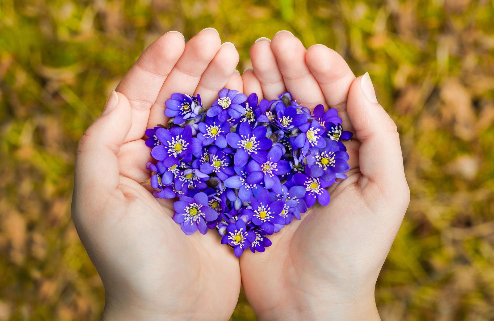 Beautiful Flowers - The Waypointe Apts