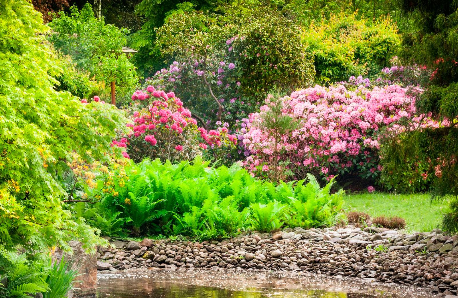 kyoto garden in dtla