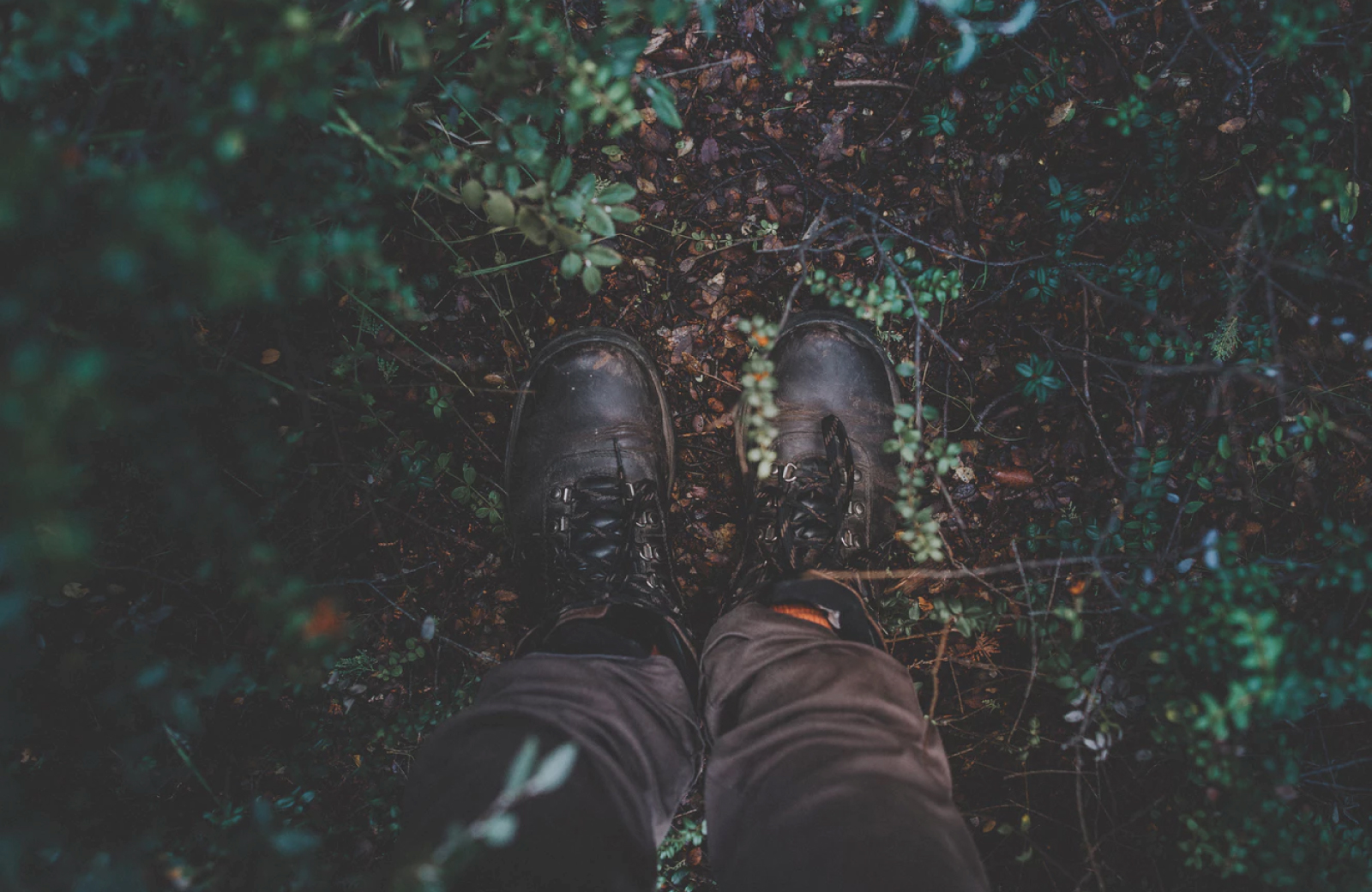 Hiking Trails in Fairfield County