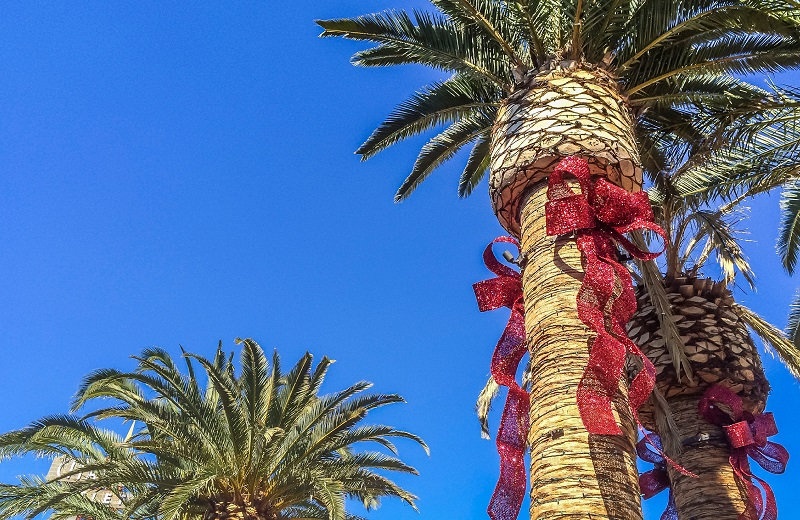 palm trees with red holiday ribbons high in the LA sky - The Madrid Westchester LA apts