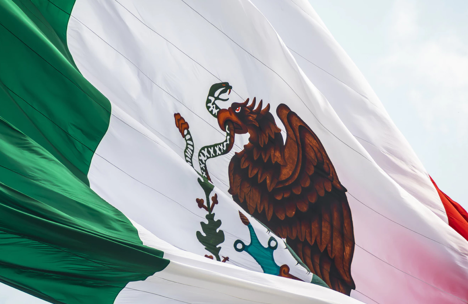 mexican flag with fireworks on background LA