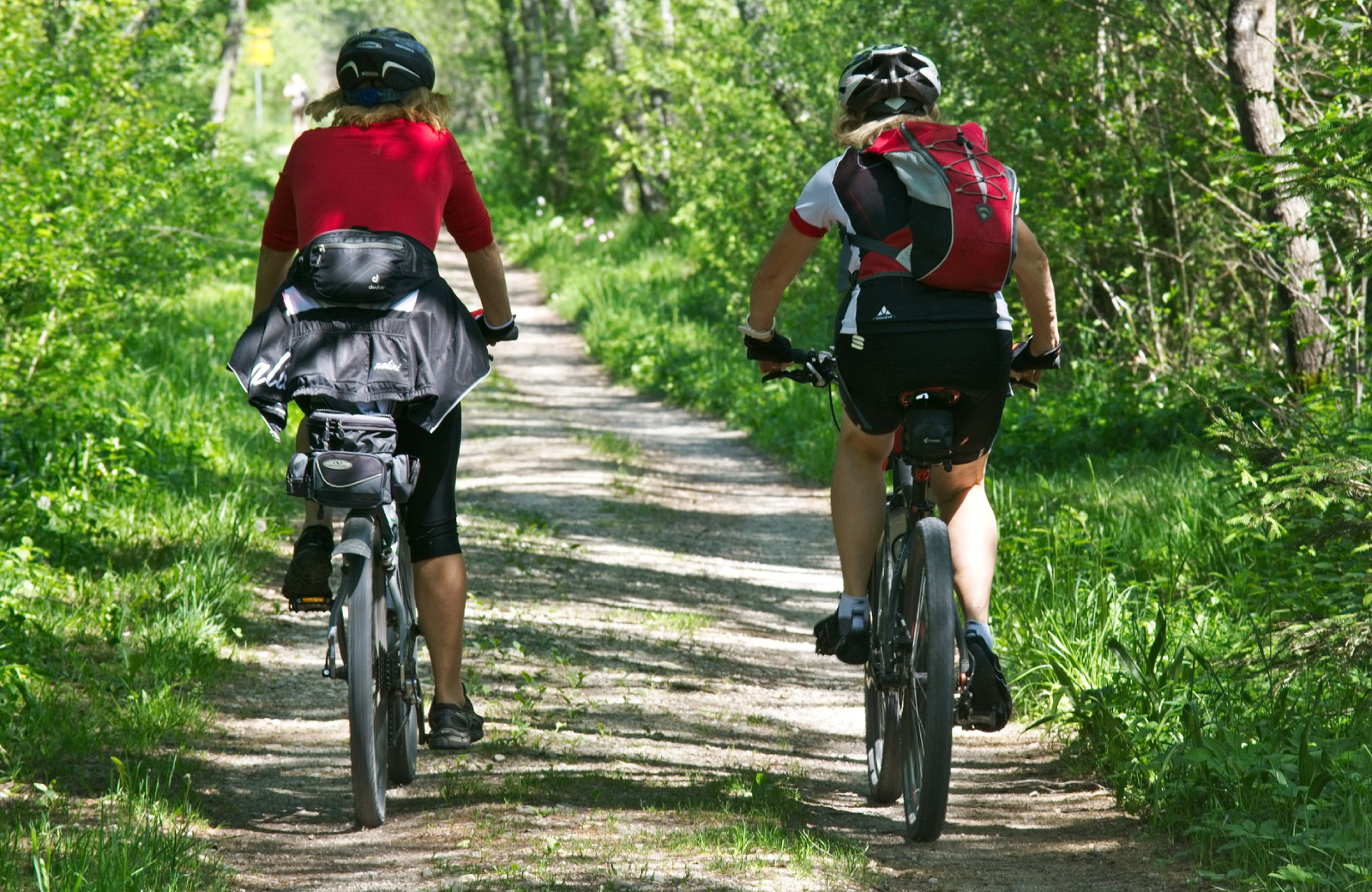 two bikers cycling through the forest norfolk waypointe