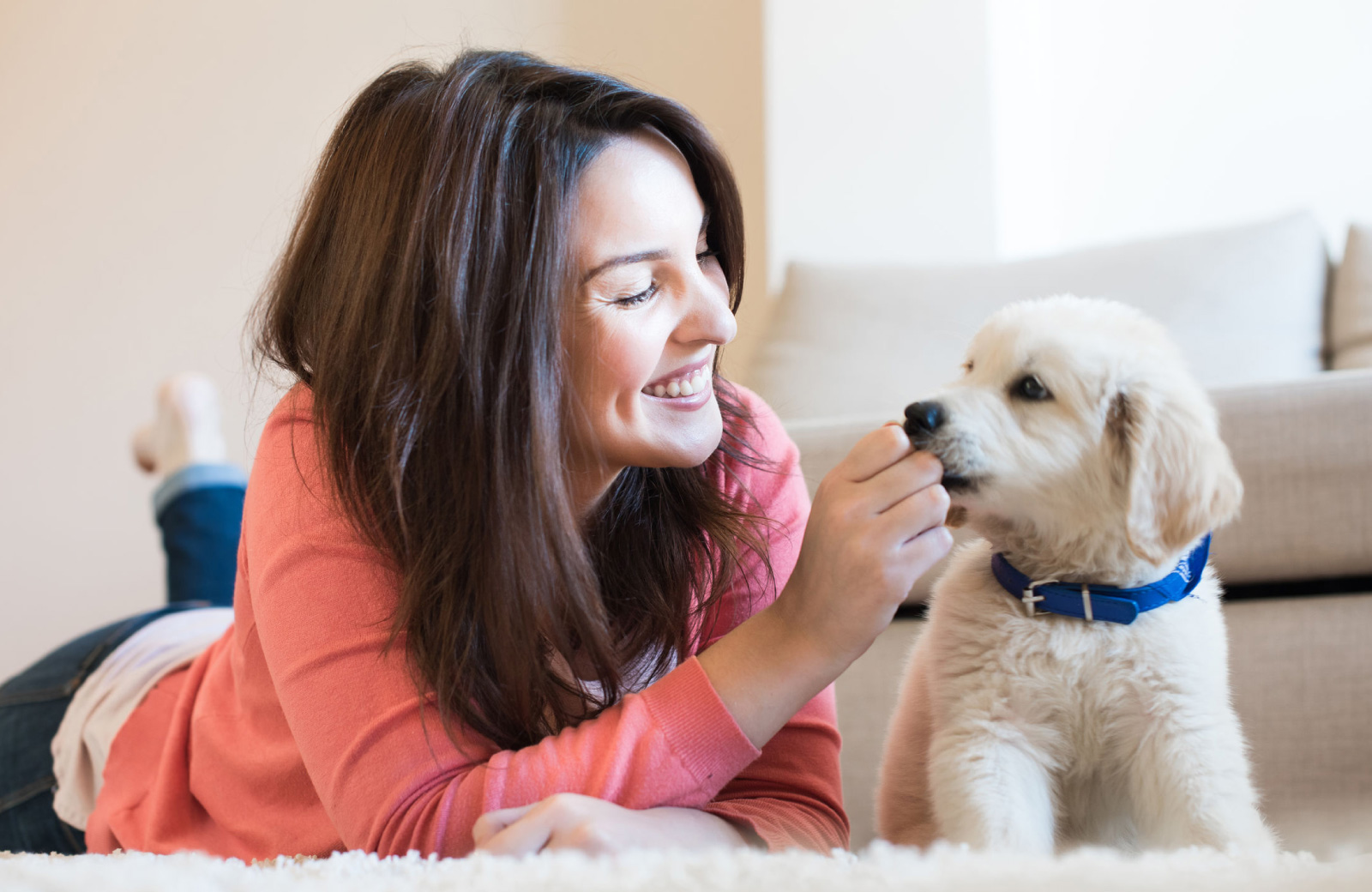 woman with dark brown hair in a pink sweater with yellow lab puppy - Hyde Square Apts