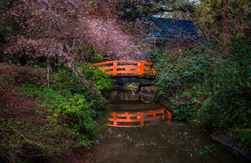 red bridge in a park