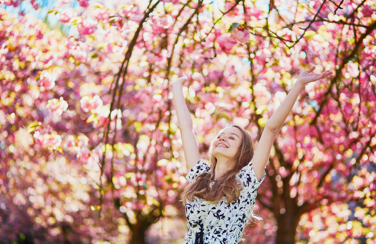 woman enjoying pink spring blossoms on trees in Upper East Side NYC park - The Cole
