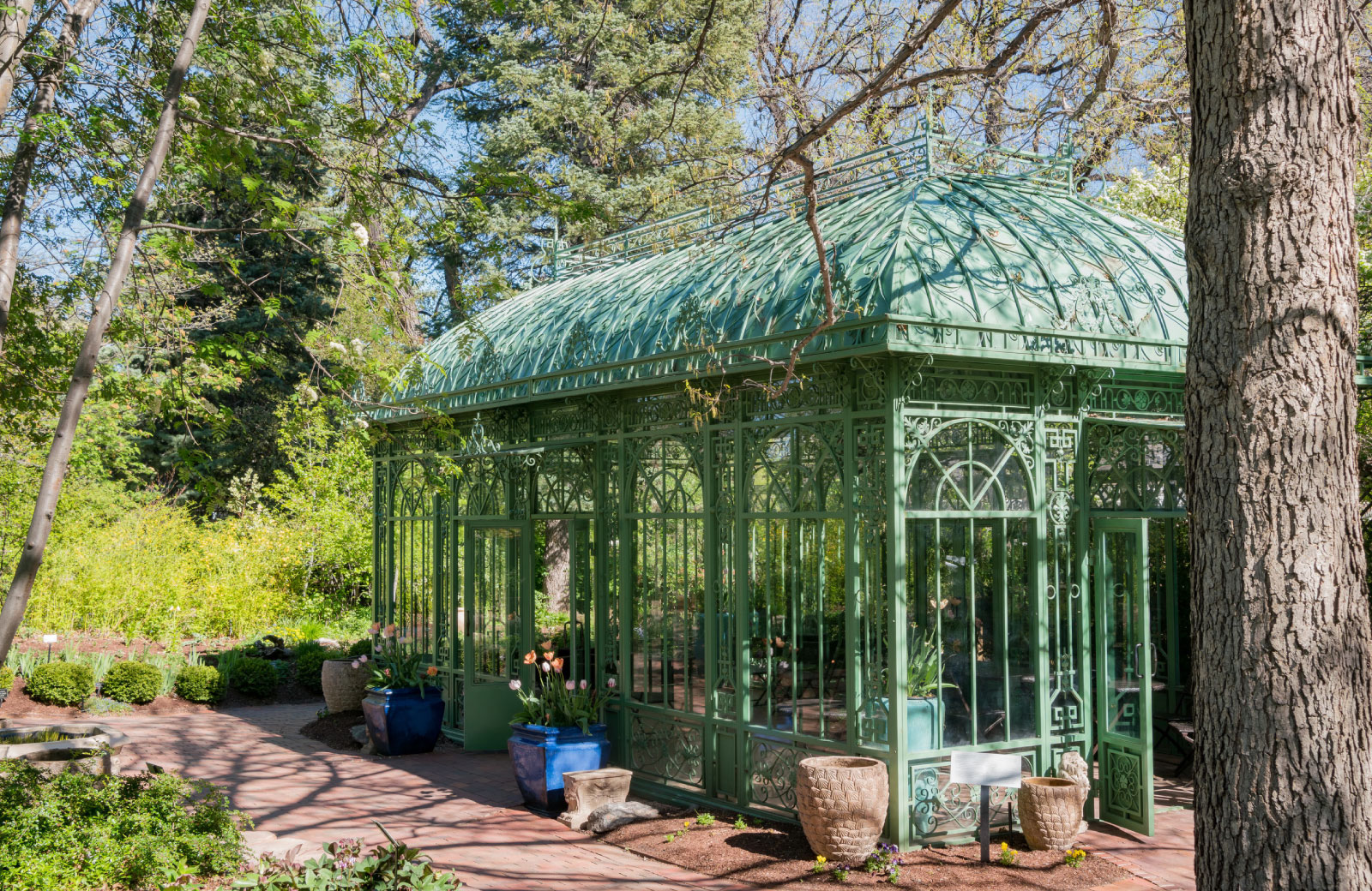 greenhouse in the middle of a garden
